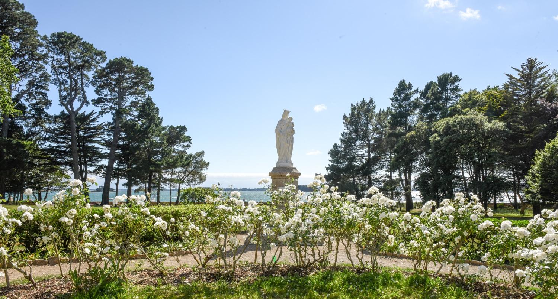 La Vierge et ses roses blanches